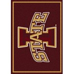 "Milliken College Team Spirit (NCAA) Iowa State 74200 Spirit Rectangle (4000019438) 2'8"" x 3'10"" Area Rug"
