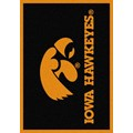 Milliken College Team Spirit (NCAA) Iowa 74218 Spirit Rectangle (4000019444) 2