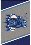 Milliken College Team Spirit (NCAA-SPT) Columbia 00410 Spirit Rectangle (4000054387) 5'4