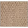 Capel Rugs Creative Concepts Grassy Mountain - Octagon 6