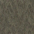 "Shaw Sync Up: Directory 24"" x 24"" Carpet Tile J0126 26302"