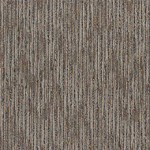 "Shaw Sync Up: Time 24"" x 24"" Carpet Tile J0126 26508"