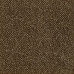 "Milliken Legato Fuse: Java Brown 19.7"" x 19.7"" Carpet Tile 600"