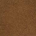 "Milliken Legato Embrace: First Cup 19.7"" x 19.7"" Carpet Tile 904"