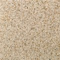 "Daltile Granite: Golden Garnet Polished 12"" x 12"" Natural Stone Tile G254-12121L"