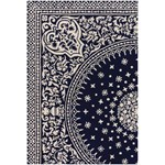 "Chandra Thomaspaul (T-SOIC-79106) 7'9""x10'6"" Rectangle Area Rug"